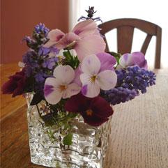 春の花100419.jpg