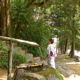 松江130610_1.jpg