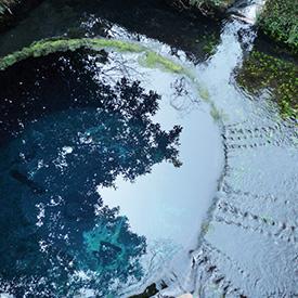 湧き水140228_1.jpg