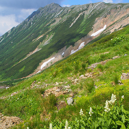 登山190815_7.jpg