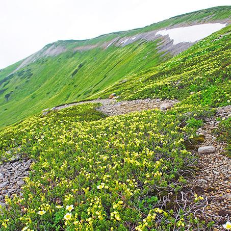 登山190817_2.jpg