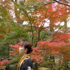 鎌倉101129.jpg